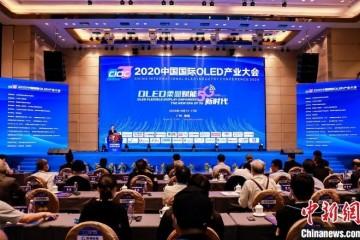"""2020中国国际OLED产业大会盛大举行!行业学者专家、企业家齐聚荔乡,共论羊城""""显示未来"""""""